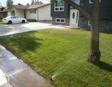 Landscape Construction, Example #2