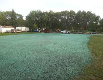 Landscape Repairs, Example #3