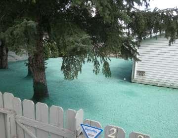 Landscape Repairs, Example #1