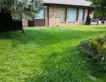 Landscape Repairs, Example #2